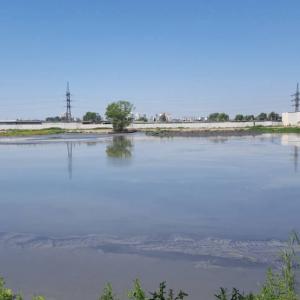 """На золовідвалі Дарницької ТЕЦ висадився """"Екологічний десант"""""""