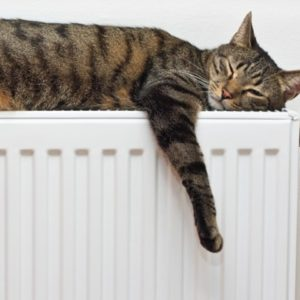 """ТОВ """"Євро-Реконструкція"""" продовжує підключення споживачів до тепла!"""
