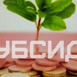 Як працюватиме монетизація субсидій?! Роз'яснення!